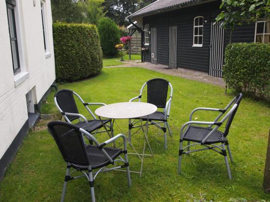 Wehe-Den Hoorn, Ολλανδία: klein zitje