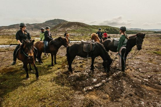 Photo of Tourist Attraction Ishestar Horse Riding Tours at Soerlaskeid 26, Hafnarfjordur 220, Iceland