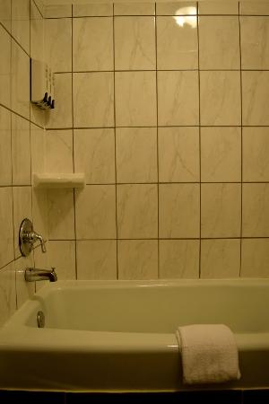 Snelling Motel: bath room
