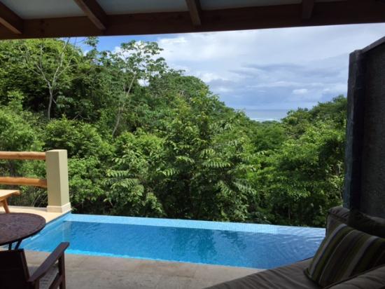 Hotel Casa Chameleon: Villa Plunge Pool