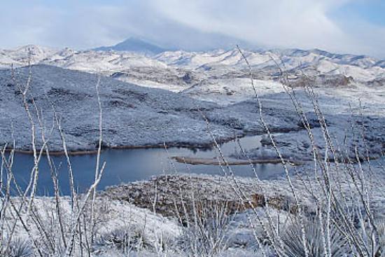 Patagonia-Sonoita Creek Preserve: Sonoita Creek Preserve in the winter