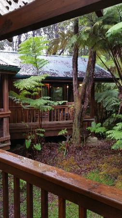 Volcano Village Lodge : 20160601_172118_large.jpg
