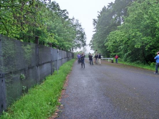 Grenzanlage Und Skulpturenpark