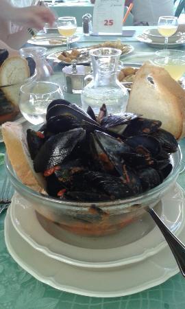 Hotel Cola: Leckere Muscheln zum Abendessen