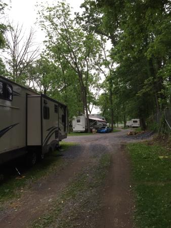Early June at Falling Waters Campsite