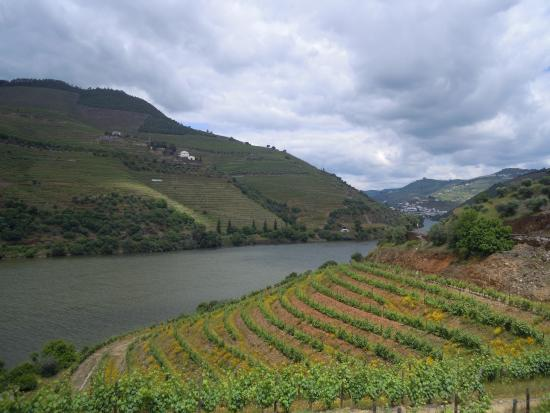 ‪The Douro Valley‬