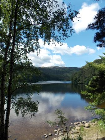 Pitlochry, UK: Loch Faskally:  from the eastern shore. July 2014