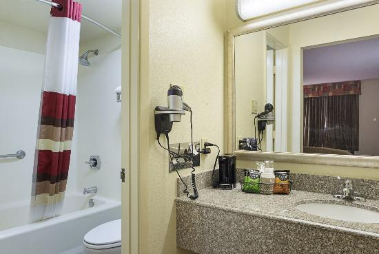 Red Roof Inn & Suites Addison: Vanity