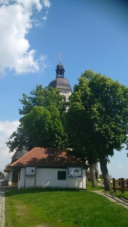 Bogenberg