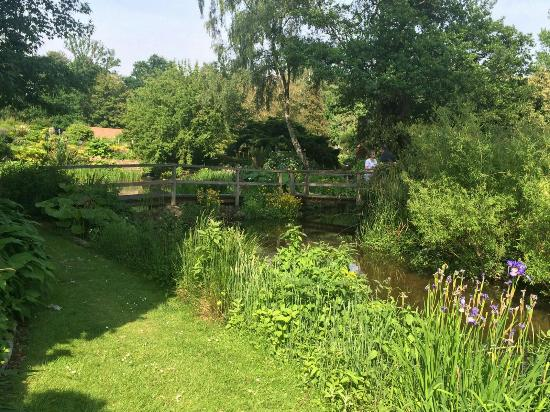 Fuller's Mill Garden: Some pictures from a sunny afternoon at the Mill with tea and homemade cake 😊
