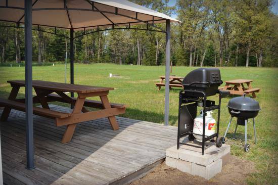 Adams, WI: BBQ/picnic area