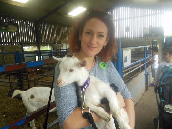 Etwall, UK: Now she wants a pet goat