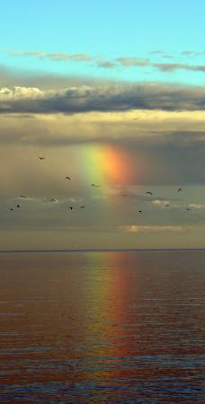 Baileys Harbor, WI: Partial rainbow....taken from the beach area.