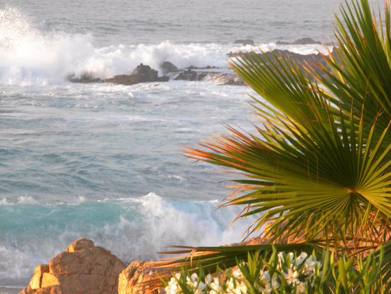 Sheraton Grand Los Cabos Hacienda del Mar: Wake up to this every day!