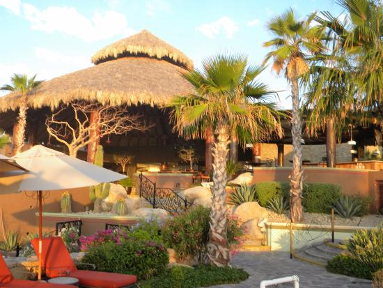 Sheraton Grand Los Cabos Hacienda del Mar: Pitayas, Asian-Pacific fusion food that is mind-boggling!