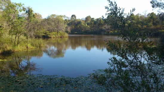 Berrinba Wetlands Park