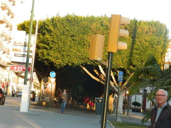 Malaga, WA: Paseo de Reding