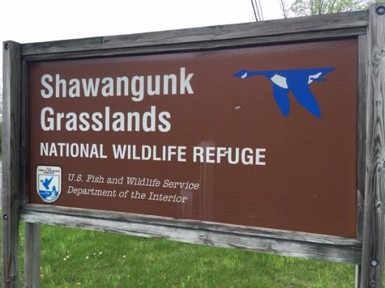 ‪Shawangunk Grasslands National Wildlife Refuge‬