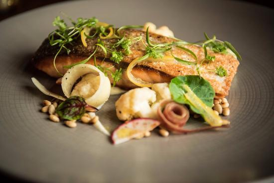 Wayne, Pensilvania: Scottish Salmon