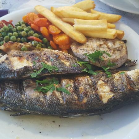 Argo Restaurant : IMG_20160607_230754_large.jpg