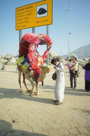 Jabal Ar-Rahmah - Picture of Jabal-e-Rehmat, Mecca - TripAdvisor