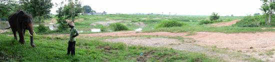 Lampung, อินโดนีเซีย: Taman Nasional Waykambas