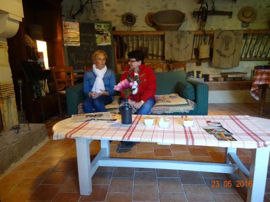 Boece, France: côté salon et cheminée
