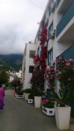 Bella Vista Hotel Photo