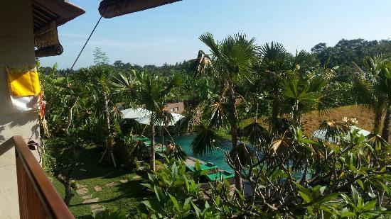 Ubud Tropical Garden Photo