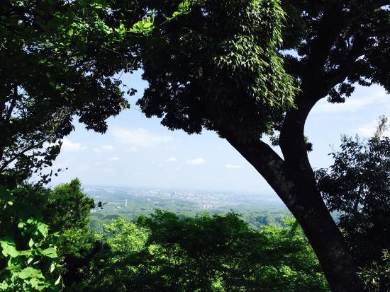 高尾山 Picture