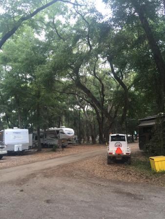 Jekyll Island Campground Photo