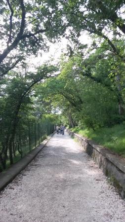 Belvedere Obelisco di Opicina