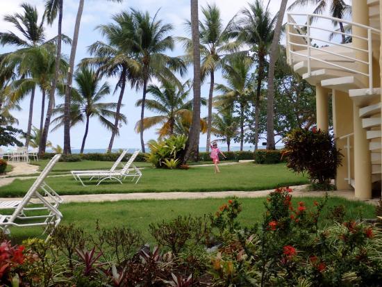 Cabarete Palm Beach Condos : View from #102 patio