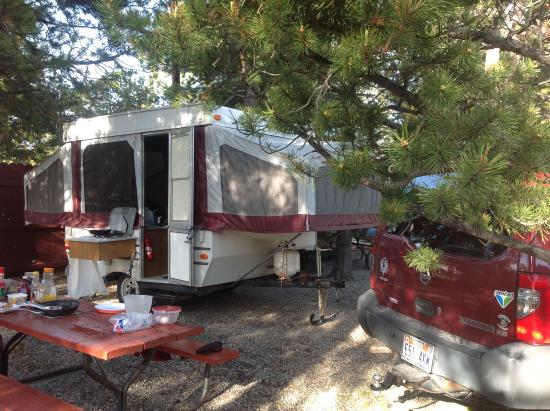 Rustic Wagon RV Campground & Cabins: Our site (#31)