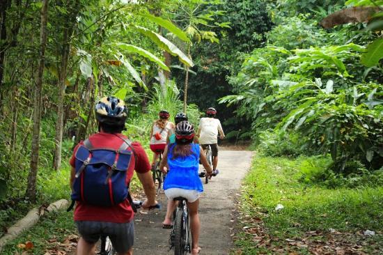 Bali Countryside Bike Tour Picture Of Bali Countryside Cycling