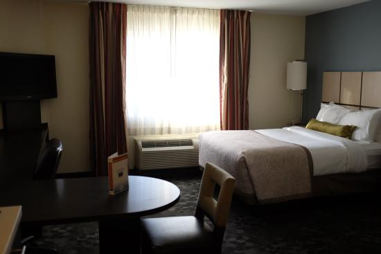 Candlewood Suites Baltimore-Linthicum: Guest Room