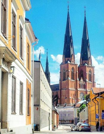 Ουψάλα, Σουηδία: Кафедральный собор Уппсалы