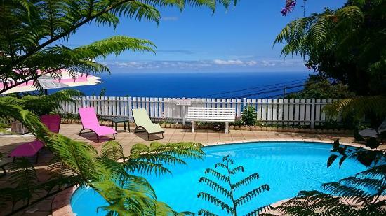 Les Kreol'Inns: au calme avec la piscine chauffée....