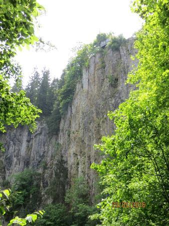 Regione della Moravia meridionale, Repubblica Ceca: IMG_7997_large.jpg