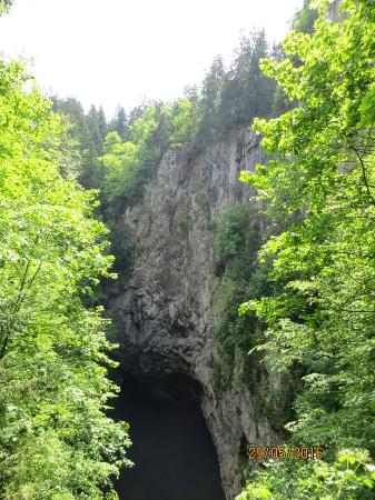 Regione della Moravia meridionale, Repubblica Ceca: IMG_7994_large.jpg