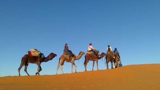 Desert Tripper: Paseo en camello hasta las jaimas del campamento para dormir entre las dunas!