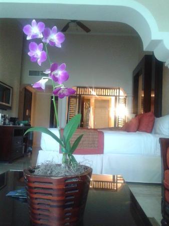 Paradisus Palma Real Golf & Spa Resort: Our room
