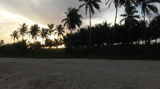 Sunflower Beach Resort Photo