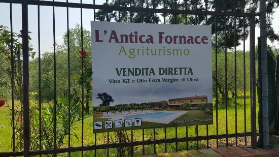 Agriturismo L'Antica Fornace: Wonderful place; lovely landlady; incredible Tuscan landscape