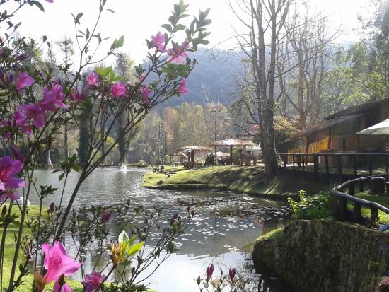 Restaurante Arco Iris: Vista do lago