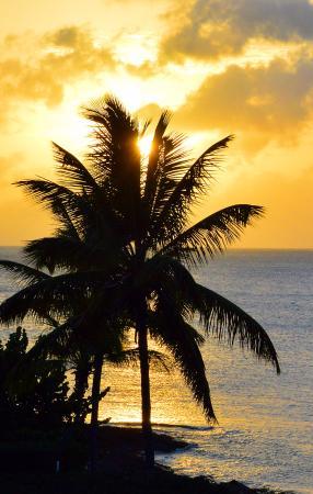 Hawksbill by Rex Resorts: Sunset.