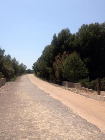 The Via Verde Green Route: Prachtig fietsen en wandelen langs de schitterende kust!