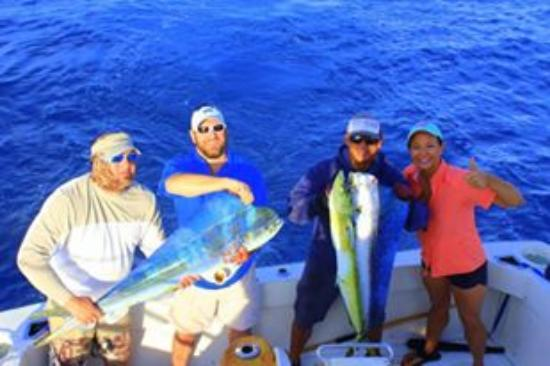 Redrum Sportfishing: Just a few of the dorado we caught that day!