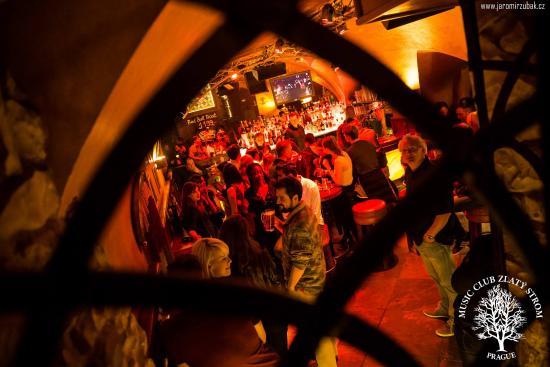 Zlaty Strom Prague: Music Club Zlaty Strom