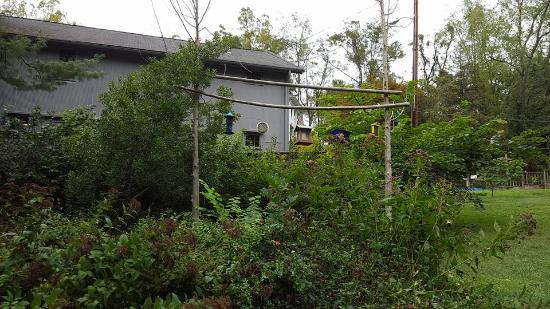 Eden Mill Nature Center: Bird sanctuary outside the nature center